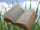 Christelijke e-card: Johannes 20:29b