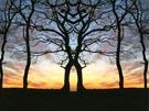Christelijke e-card: Psalm 47:5