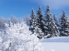 Christliche eCard Sneeuw;