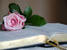 Christelijke e-card: Psalm 119:97