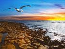 Christelijke e-card: Psalm 139:9,10